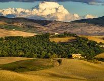 ландшафт tuscan Красивое тосканское утро Стоковое Изображение