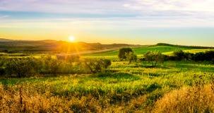 ландшафт tuscan Стоковые Фотографии RF