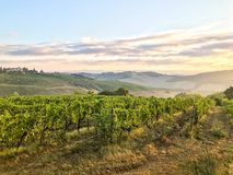 ландшафт tuscani стоковая фотография rf