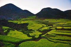 ландшафт yunnan фарфора Стоковые Фото