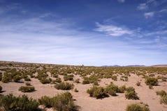 Анды и пустыня atacama, Uyuni, Боливия Стоковые Изображения