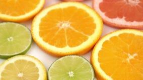 Апельсины, грейпфрут, и другое приносить видеоматериал