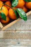 Апельсины Tangerines, Клементины, цитрусовые фрукты с зелеными листьями в деревянной коробке над светлой деревянной предпосылкой  Стоковые Фотографии RF
