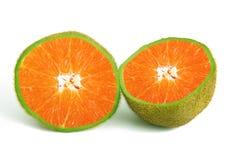 Апельсин-киви плодоовощ Ibrid Стоковая Фотография RF