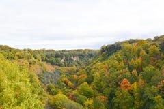 Апельсин tre долины осени Стоковая Фотография