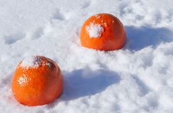 2 апельсина в снеге Стоковая Фотография