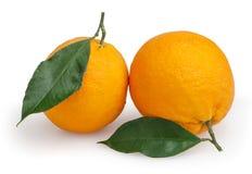 2 апельсина изолированного на белизне Стоковое Изображение