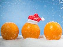 3 апельсина рождества Стоковое Изображение RF