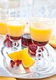 Апельсиновый сок с sirup гренадина Стоковое Фото
