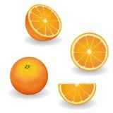 Апельсины, весь, половинные, кусок, клин иллюстрация вектора