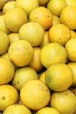 Апельсины в одной корзине Стоковые Фотографии RF