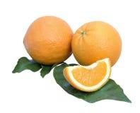Апельсины и гвоздичное дерево Стоковое Изображение RF