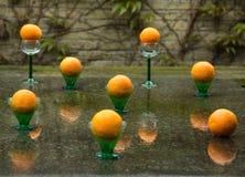 Апельсины и падения дождя Стоковое Изображение RF