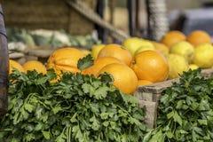 Апельсины и петрушка стоковая фотография