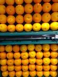 Апельсины мандарина Стоковое фото RF