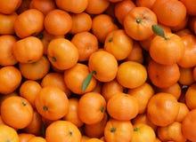 Апельсины на предпосылке Стоковые Изображения RF