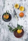 Апельсины на светлой предпосылке стоковая фотография rf