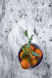 Апельсины на светлой предпосылке стоковые фотографии rf
