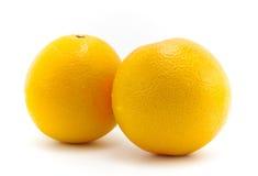 Апельсины пупка Стоковая Фотография RF