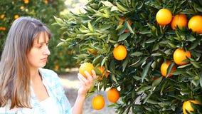 Апельсины рудоразборки молодой женщины в саде акции видеоматериалы