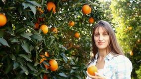 Апельсины рудоразборки молодой женщины в саде видеоматериал