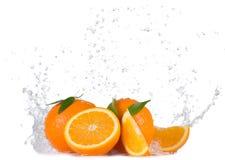 Апельсины с водой брызгают на белой предпосылке стоковые фотографии rf