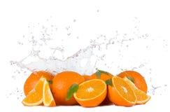 Апельсины с водой брызгают на белой предпосылке Стоковая Фотография RF