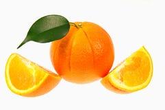 Апельсины. Стоковое Фото