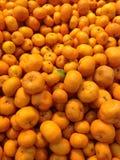 Апельсины Стоковые Изображения RF