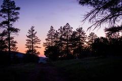 Апельсин захода солнца Стоковая Фотография