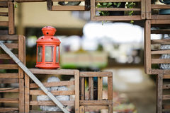 Апельсин задней лампы помещенный в саде Стоковые Фотографии RF