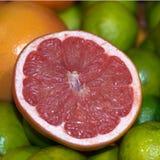 Апельсин крови Стоковая Фотография RF