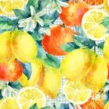 Апельсин мандарина акварели и плодоовощ лимона разветвляют с картиной листьев безшовной Стоковое Фото
