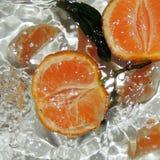 Апельсин, мандарин, цитрус, плодоовощ, вода, здоровая еда Стоковая Фотография