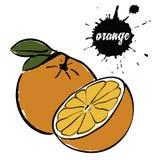 Апельсин плодоовощ зрелый бесплатная иллюстрация