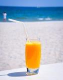 Апельсин свежий Стоковое Изображение RF