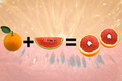 Апельсин смешивания арбуза Стоковые Изображения
