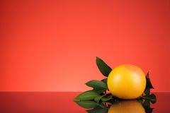 Апельсин с красной предпосылкой Стоковое фото RF