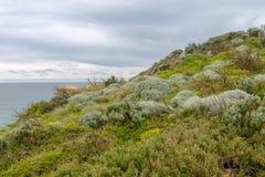 12 апостола, большая дорога океана, Виктория Австралия октябрь 2017 Стоковые Фото