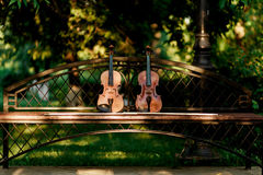 Аппаратура музыки скрипки оркестра Скрипки в парке на стенде стоковые фотографии rf