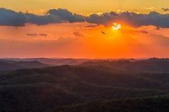 Аппалачи, сценарный заход солнца, Кентукки Стоковая Фотография