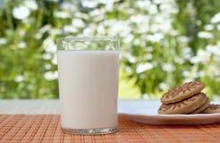 аппетитное свежее стеклянное молоко Стоковое фото RF