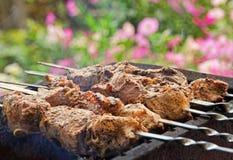 Аппетитное kebab Shish варит на барбекю Стоковые Фото