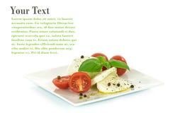 Аппетитный сыр моццареллы с добавляет Стоковые Изображения