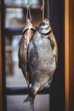2 аппетитных высушенных рыбы весят на запачканной предпосылке Стоковые Фотографии RF