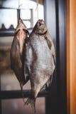 2 аппетитных высушенных рыбы весят на запачканной предпосылке Стоковая Фотография RF