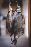 2 аппетитных высушенных рыбы весят на запачканной предпосылке Стоковая Фотография
