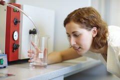 аптекарь чашки измеряя Стоковые Фотографии RF