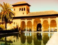 арабский золотистый бассеин ладони дворца Стоковое Изображение