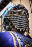 Арабский ферзь Гранады Стоковые Фотографии RF